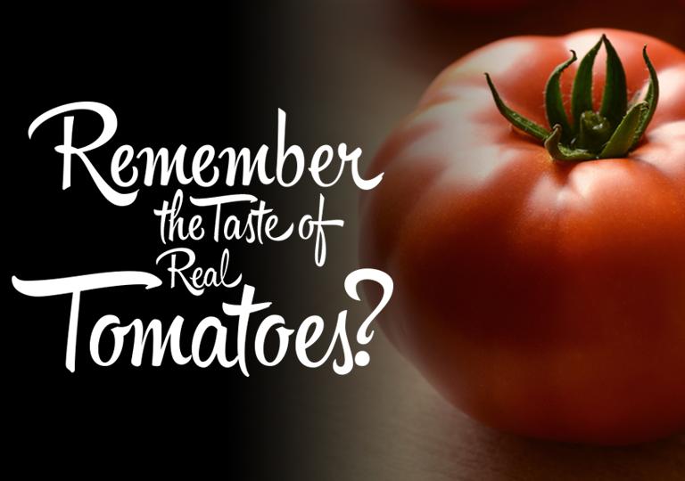 Tomato mobile